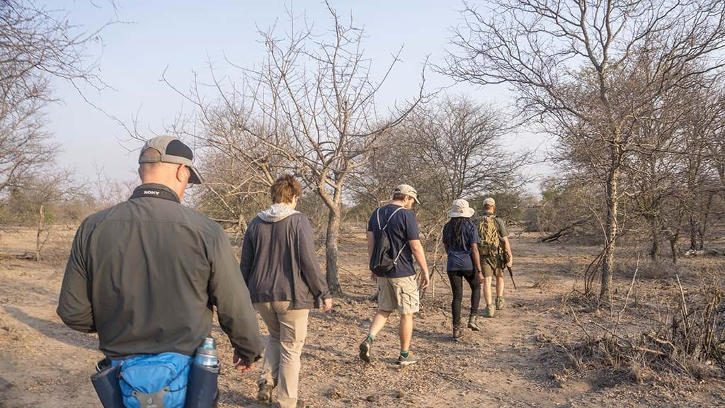 Africa on Foot & nThambo