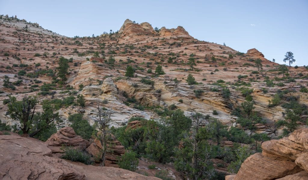 tips zion national park: zion canyon overlook